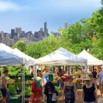 Farmers Markets in Chicago Schedule