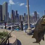 Fishing in Chicago – 25 Spots for Tight Lines