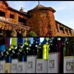 Explore Illinois Wineries – They Are Everything You Want