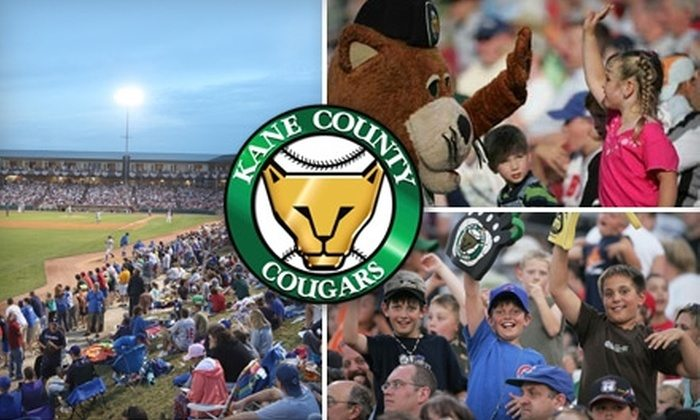 Top 5 Minor League Baseball Teams In And Around Chicago